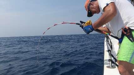 fishing_season